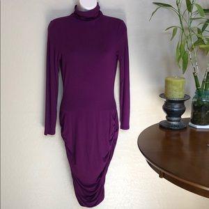 Venus Turtleneck Dress Size XS